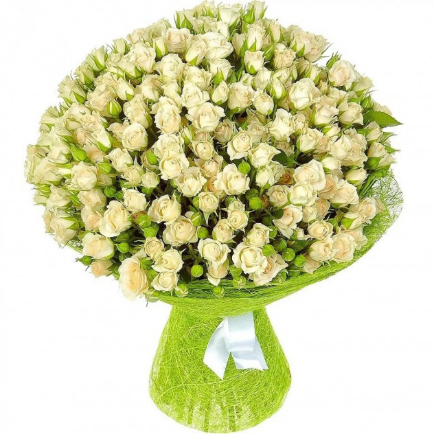 Букет из 51 белой кустовой розы