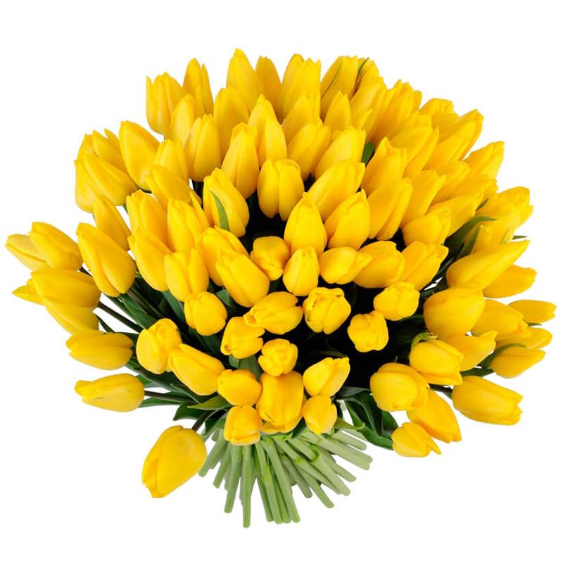 Букет из 35 желтых тюльпанов